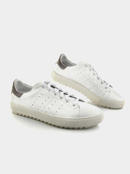 کفش اسپورت مردانه 71053 MS2526  AG